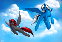Size: 1600x1091 | Tagged: safe, artist:l1nkoln, oc, oc only, oc:buffonsmash, oc:dicemare, pegasus, pony, amazing, art, background, beautiful, black, black and red, black and white, blank flank, blue oc, blue sky, cloud, commission, couple, cute, cutiemarking, digital, digital art, duo, female, flying, freckles, grayscale, green eyes, grey oc, looking at each other, looking back, male, mare, monochrome, painted, pretty, red, red eyes, shading, sky, smiling, spread wings, stallion, white, wings