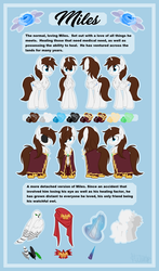 Size: 3356x5707 | Tagged: safe, artist:kellythedrawinguni, oc, oc only, oc:miles, alicorn, owl, pony, absurd resolution, alicorn oc, blanket, blue eyes, broach, cape, chest fluff, clothes, crest, easter egg, eyepatch, green eyes, height difference, impossibly large chest fluff, magic, magic aura, male, multiple variants, pet, reference sheet, size chart, size comparison, solo