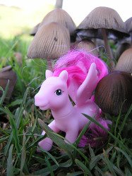 Size: 1280x1707 | Tagged: safe, artist:travelling-my-little-pony, heart throb, g1, fungus, grass, irl, mushroom, outdoors, photo, photography, toadstool, toy