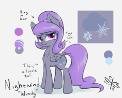 Size: 750x600 | Tagged: artist:malwinters, female, mare, oc, oc:nightwind, oc only, pegasus, pony, reference sheet, safe, solo
