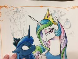 Size: 1200x900 | Tagged: safe, artist:andypriceart, philomena, princess celestia, princess luna, tiberius, alicorn, opossum, phoenix, pony, angry, looking at you, photo, royal sisters, smiling, smirk, traditional art, water balloon