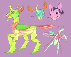Size: 1105x878 | Tagged: safe, artist:jayrockin, starlight glimmer, thorax, changedling, changeling, insect, pony, unicorn, tiny sapient ungulates, alternate design, female, frown, king thorax, male, mare, nervous, purple background, realistic, simple background, sweat, whiskers