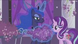 Size: 1920x1080   Tagged: safe, screencap, princess luna, starlight glimmer, pony, unicorn, a royal problem, duo, female, flower, glowing horn, lavender, magic, magic aura, mare, telekinesis