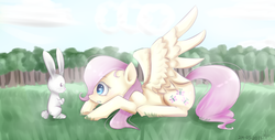 Size: 936x474 | Tagged: safe, artist:sisitowe, angel bunny, fluttershy, duo, looking at each other, profile, prone, spread wings, wings