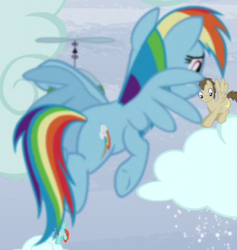 Size: 480x507 | Tagged: safe, screencap, crescent pony, mane moon, rainbow dash, tank, pegasus, pony, tortoise, tanks for the memories, butt, cloud, cropped, female, flying, frown, male, mare, plot, propeller, sky, smiling, snow, stallion