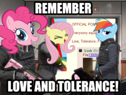 Size: 480x360 | Tagged: artist needed, safe, fluttershy, pinkie pie, rainbow dash, pony, /co/, 4chan, artifact, call of duty, call of duty: modern warfare 2, eyes closed, flutteryay, image macro, impact font, love and tolerance, love and tolerate, m4, meme, mlpg, modern warfare 2, no russian, stock vector, weapon, yay