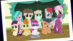 Size: 1920x1080   Tagged: safe, screencap, aquamarine, boysenberry, cheerilee, first base, gallop j. fry, little red, peach fuzz, super funk, train tracks (character), pony, a flurry of emotions, chalkboard, cough, female, filly, floppy ears, horsey hives, one of these things is not like the others, photo, ponyville schoolhouse, school, sick
