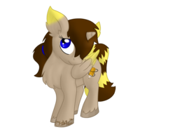 Size: 1024x768   Tagged: safe, artist:usagi-zakura, oc, oc only, oc:kouma, alicorn, pony, alicorn oc, colored wings, colored wingtips, ponysona, simple background, solo, transparent background
