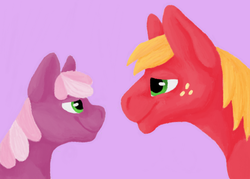 Size: 639x458 | Tagged: safe, artist:believeinshadows, big macintosh, cheerilee, earth pony, pony, cheeribetes, cheerimac, cute, female, macabetes, male, mare, shipping, stallion, straight