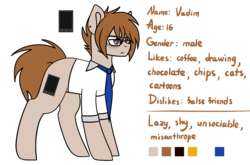 Size: 2181x1440 | Tagged: safe, artist:despotshy, oc, oc only, oc:vadim, earth pony, pony, brown eyes, brown mane, clothes, glasses, male, ponysona, reference sheet, solo, stallion