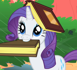 Size: 779x718 | Tagged: safe, screencap, rarity, pony, unicorn, look before you sleep, book, book hat, cropped, cute, female, mare, mouth hold, rarara, raribetes, silly, silly pony, solo