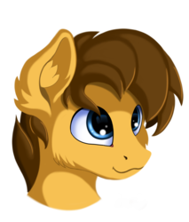 Size: 1700x2000 | Tagged: safe, artist:qbellas, oc, oc only, pony, bust, cute, portrait, simple background, smiling, style emulation, transparent background