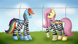 Size: 3500x2000   Tagged: safe, artist:fizzy68, fluttershy, rainbow dash, pony, bound wings, chains, clothes, comforting, cuffs, fence, grass, jail, prison, prison outfit, prison stripes, prisoner rd, sad, shackles, yard