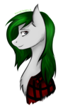 Size: 807x1357 | Tagged: safe, artist:xanderserb, oc, oc only, oc:rannveig, pony, green, head, red shirt, smiling, solo