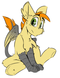 Size: 1572x2025 | Tagged: artist:ralek, colored wings, crossbreed, cute, foal, freckles, gradient wings, hippogriff, leonine tail, looking at you, male, oc, oc only, parent:oc:honey blossom, parent:oc:ralek, safe, simple background, slit eyes, source needed, talons, underhoof, white background, wings