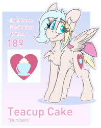 Size: 2832x3579 | Tagged: artist:ralek, bow, cutie mark, female, gradient background, oc, oc only, oc:teacup cake, pegasus, pony, reference sheet, safe, simple background, solo, tail bow, transparent background