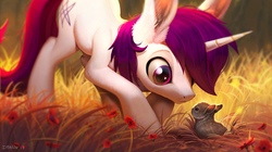 Size: 1859x1042 | Tagged: safe, artist:imalou, oc, oc only, oc:lapush buns, pony, rabbit, unicorn, bunnycorn, cute, depth of field, ear fluff, long ears, looking at each other, male, solo, stallion