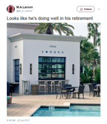 Size: 640x741 | Tagged: safe, barely pony related, good end, hotel, implied king sombra, irl, larson you magnificent bastard, m.a. larson, meta, namesake, no pony, palm tree, photo, retirement, swimming pool, tree, twitter