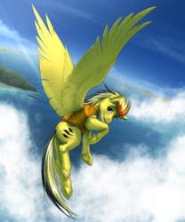 Size: 2375x2850 | Tagged: safe, artist:mykegreywolf, oc, oc only, oc:electuroo, pegasus, pony, clothes, cloud, commission, flying, looking back, male, smiling, solo, stallion