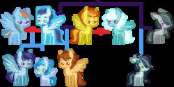 Size: 850x430 | Tagged: safe, artist:marshmall0wface, fleetfoot, marble pie, rainbow dash, soarin', spitfire, oc, earth pony, pegasus, pony, alternate hairstyle, beard, crack shipping, divorce, facial hair, female, fleetfire, grey hair, lesbian, male, marblein, mare, offspring, parent:fleetfoot, parent:marble pie, parent:rainbow dash, parent:soarin', parent:spitfire, parents:fleetfire, parents:soarindash, parents:soarinfire, shipping, soarin' gets all the mares, soarindash, soarinfire, stallion, straight