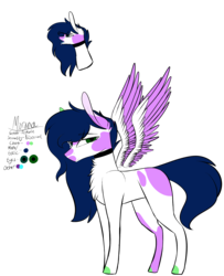 Size: 3368x4147 | Tagged: safe, artist:sweetmelon556, oc, oc only, oc:morana, pegasus, pony, female, high res, mare, reference sheet, simple background, solo, transparent background