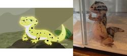 Size: 1272x567   Tagged: safe, screencap, ray, gecko, leopard gecko, eqg summertime shorts, equestria girls, pet project, comparison, irl, irl ray, pet, photo