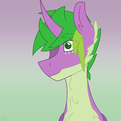Size: 1688x1688   Tagged: safe, artist:moonakart13, artist:moonaknight13, spike, pony, unicorn, fluffy, freckles, markings, ponified, ponified spike, smiling, solo