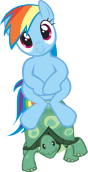 Size: 885x1728 | Tagged: artist:elementaggregator, cute, dashabetes, may the best pet win, pegasus, ponies riding turtles, pony, rainbow dash, riding, safe, simple background, sitting, .svg available, tank, transparent background, vector