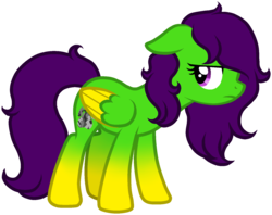 Size: 1593x1260 | Tagged: artist:anxiouslilnerd, artist:oceanmoon-spirit, oc, oc:camoflage cat, oc only, pegasus, pony, safe, simple background, transparent background, vector, vector trace