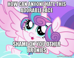 Size: 613x479   Tagged: safe, edit, edited screencap, screencap, princess flurry heart, alicorn, pony, the crystalling, baby, cute, flurrybetes, image macro, meme, spread wings, wings