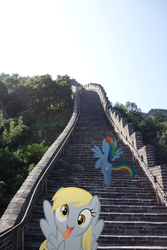 Size: 3648x5472 | Tagged: applejack, artist:eflyjason, beijing, china, derpy hooves, great wall of china, irl, photo, ponies in real life, pony, rainbow dash, safe