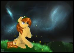 Size: 2800x2000 | Tagged: safe, artist:flareheartmz, oc, oc:harvey, earth pony, firefly (insect), pony, blue eyes, grass, hat, male, night, scenery, sky, solo, stallion, stargazing, stars