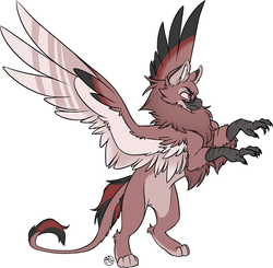 Size: 1404x1374 | Tagged: artist:kez, beak, chest fluff, fluffy, griffon, oc, oc:kali, oc only, safe, simple background, spread wings, stance, standing, tail, talons, white background, wings