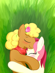Size: 1500x2000 | Tagged: safe, artist:truffle shine, evening star, roseluck, earth pony, pony, blushing, clothes, cuddling, eveningluck, eyes closed, female, flower, flower in hair, grass, grass field, lying down, male, mare, pasture, scarf, shipping, side, signature, stallion, straight