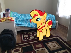 Size: 4032x3024   Tagged: safe, sunset shimmer, twilight sparkle, alicorn, pony, unicorn, 3d, 4de, augmented reality, gameloft, irl, photo, plushie, ponies in real life, room, self ponidox, twilight sparkle (alicorn)
