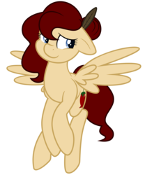 Size: 7813x9375 | Tagged: absurd res, artist:besttubahorse, artist:melodicmarzipan, female, oc, oc:minali muchim, oc only, pegasus, pony, safe, simple background, solo, transparent background, vector