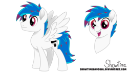 Size: 8000x4500 | Tagged: safe, artist:showtimeandcoal, oc, oc only, oc:kami, pegasus, pony, absurd resolution, bust, colt, male, movie accurate, portrait, reference, reference sheet, request, simple background, solo, stallion, style, transparent background, vector