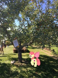 Size: 3024x4032   Tagged: safe, apple bloom, earth pony, human, pony, apple, apple tree, augmented reality, female, filly, foal, food, gameloft, irl, photo, ponies in real life, solo, tree