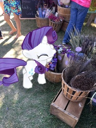 Size: 3024x4032   Tagged: safe, rarity, augmented reality, flower, gameloft, irl, photo, ponies in real life, smiling, solo