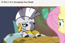 Size: 1920x1270 | Tagged: safe, edit, edited screencap, screencap, fluttershy, zecora, pegasus, pony, zebra, a health of information, bed, discovery family logo, female, implied death, leaves, mare, meme, ponified meme, sick, wikihow, zecora's hut