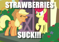 Size: 714x516 | Tagged: applejack, edit, edited screencap, honest apple, image macro, meme, safe, screencap, strawberry sunrise, that pony sure does hate strawberries, this will end in pain, this will end in tears, yelling