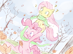 Size: 600x450   Tagged: safe, artist:speccysy, fluttershy, pinkie pie, earth pony, pegasus, pony, ask fluttershy and pinkie pie, autumn, carrying, clothes, cute, diapinkes, duo, falling leaves, female, flutterpie, hoof hold, leaf, lesbian, mare, ponies riding ponies, question mark, running, scarf, shipping, shyabetes, tree