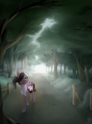Size: 899x1200 | Tagged: safe, artist:brownie97, oc, oc only, oc:cocoa dot, bat pony, pony, bat pony oc, chest fluff, commission, female, fog, mare, path, pathway, raised hoof, smiling, solo, tree