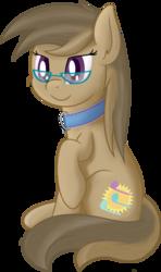 Size: 1135x1915 | Tagged: safe, artist:djdavid98, oc, oc only, oc:dawnsong, earth pony, pony, collar, female, glasses, mare, raised hoof, shading, shading practice, simple background, sitting, soft shading, solo, transparent background