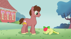 Size: 1024x563 | Tagged: safe, artist:ludiculouspegasus, oc, oc only, oc:apple spice, oc:orchid, dracony, hybrid, blank flank, crying, cutie mark, duo, grass field, interspecies offspring, male, offspring, parent:apple bloom, parent:spike, parents:spikebloom, ponyville schoolhouse, shy, stallion
