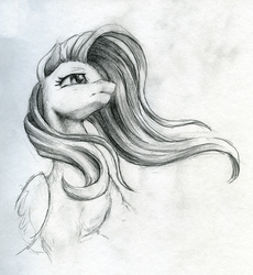 Size: 920x1000 | Tagged: safe, artist:cosmickelpie, fluttershy, pegasus, pony, bust, female, grayscale, mare, monochrome, pencil drawing, sketch, solo, traditional art
