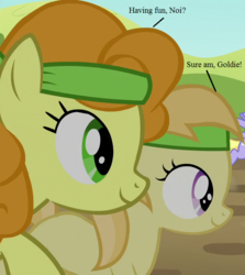 Size: 625x700 | Tagged: brotherhooves social, carrot top, cloud kicker, edit, edited screencap, golden harvest, noi, racing, safe, screencap, text