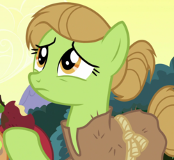 Size: 1100x1010 | Tagged: safe, screencap, earth pony, pony, campfire tales, apple, background pony, burlap, cropped, female, food, hair bun, hoof hold, mare, rotten apple, solo, unnamed character, unnamed pony