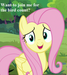 Size: 405x450 | Tagged: bird count, bronybait, cropped, cute, edit, edited screencap, fluttershy, fluttershy leans in, looking at you, safe, screencap, shyabetes, spoiler:s07e05, text