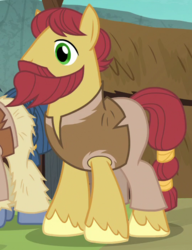 Size: 535x695   Tagged: safe, screencap, earth pony, pony, campfire tales, background pony, beard, clothes, cropped, facial hair, male, moustache, solo focus, stallion, unnamed pony